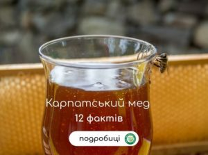 карпатський мед
